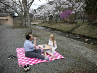 man having picnic with sex robot